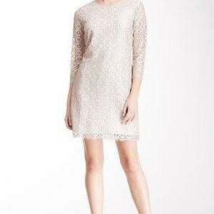 Cynthia Steffe Shift lace circle dress gold/silver